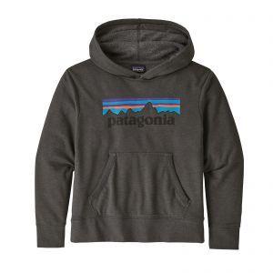 Hanorac Patagonia K Lightweight Graphic