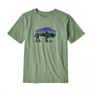 Tricou Copii Patagonia B Graphic Organic Cotton
