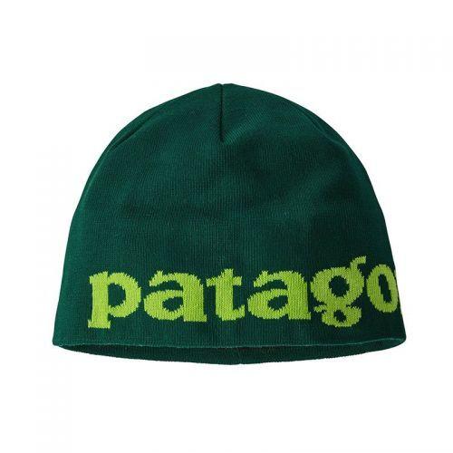 Caciula Patagonia Beanie
